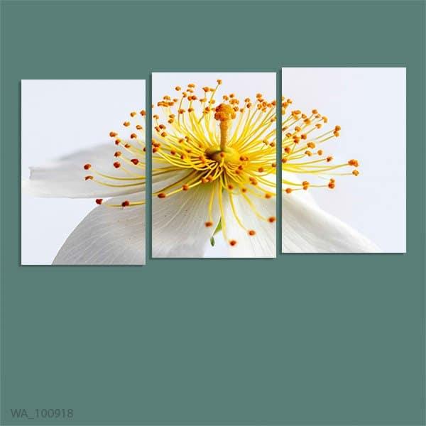 Tranh treo tường hoa mai - Mang phú quý và tài lộc cho gia chủ